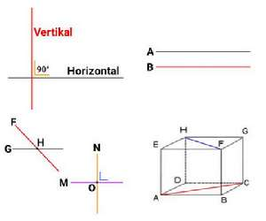 macam+macam+garis+dalam+matematika