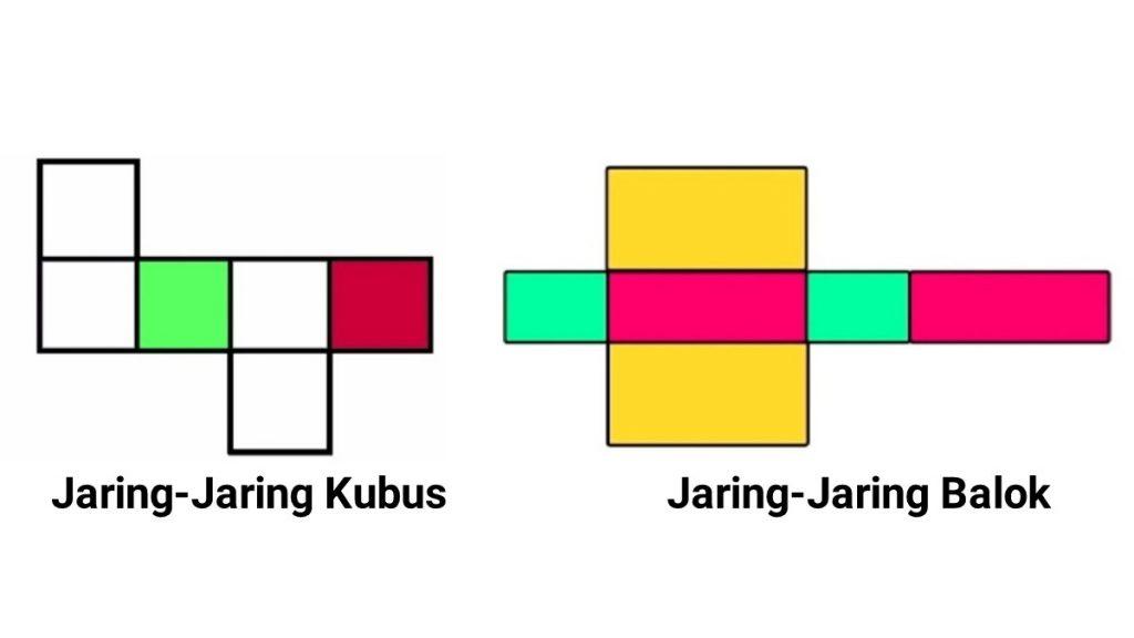 jaring+jaring+kubus+dan+balok
